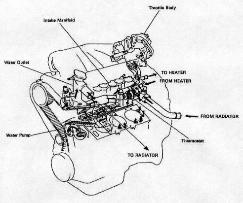 2004 Toyota Sienna Parts Diagram Thermostat