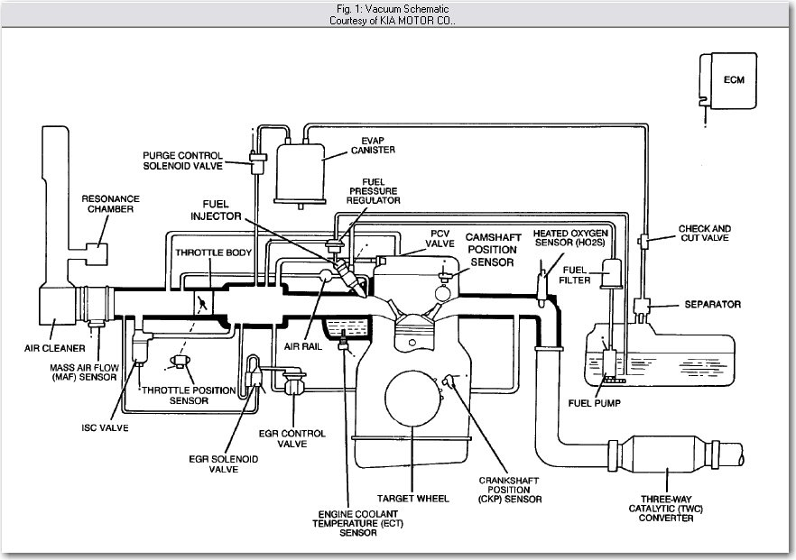 Trying To Get The Diagram For The Hoses Coming Off The Intake Manifold Of A 1995 Kia Sportage