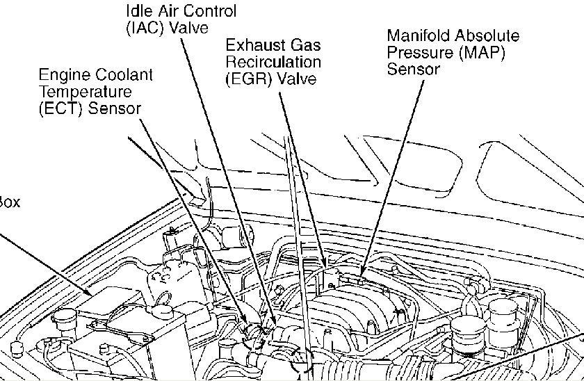 1998 isuzu rodeo timing belt diagram imageresizertool com