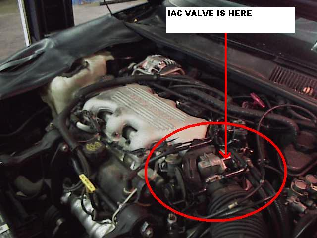Location Of Throttle Body And Iac On V on 2003 Chevy Venture Van