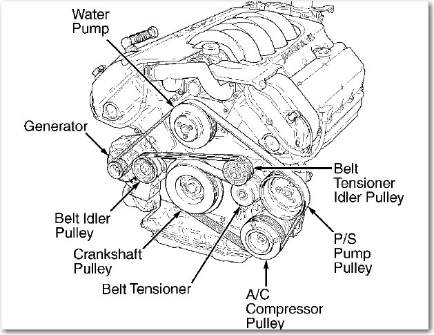 08 ford fusion belt diagram  08  free engine image for