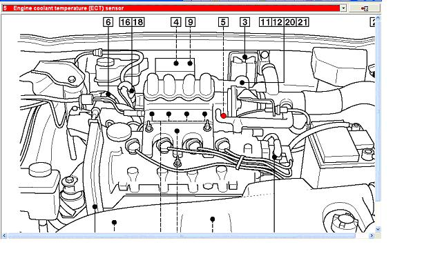 i have a 2002 y reg fiat bravo radiator fan engine temp the fiat forum site has an image of a 1 6 that should help you locate the sensor