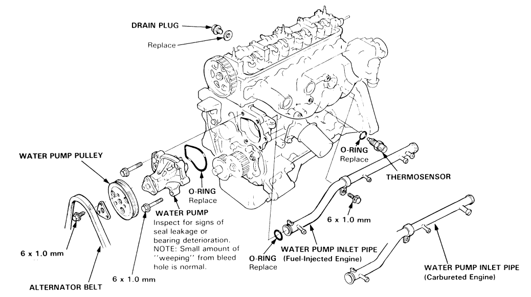 how do you replace a water pump on a 1987 honda accord exi