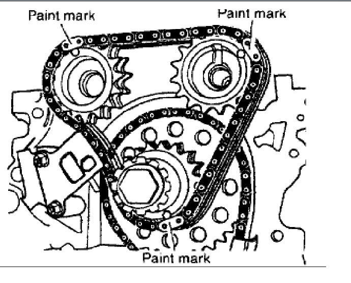 ford 5 4 dohc timing chain