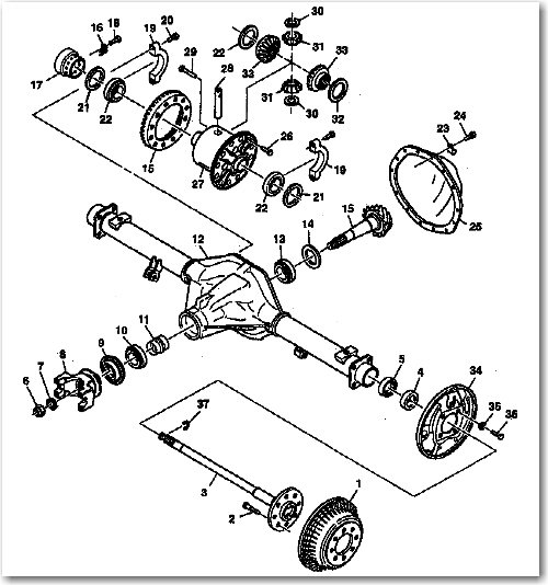 Chevy Axle Diagram