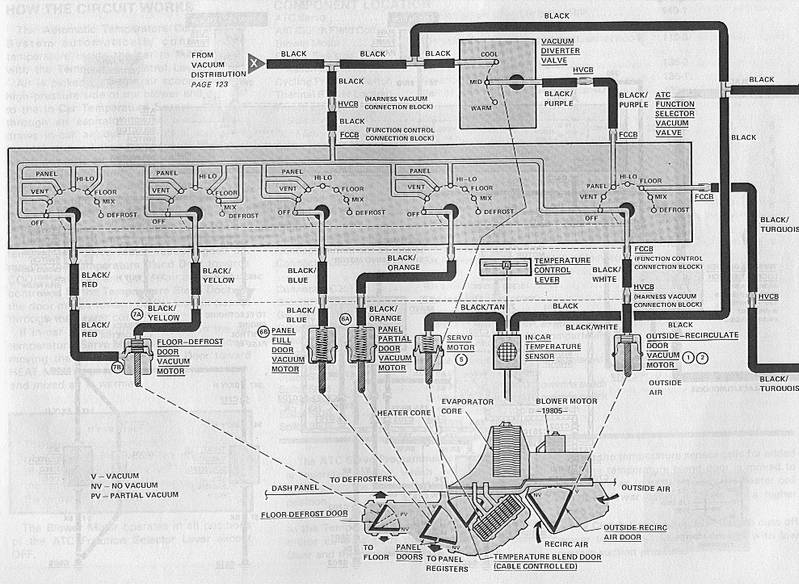 For A 1986 Lincoln Town Car Vacuum Diagrams  Lincoln  Auto