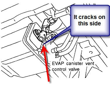 Nissan Pathfinder Evap Canister Location further Nissan Maxima Purge Valve Location likewise  furthermore Black And White Clip Art Hearts also Egr Valve 2001 Buick Lesabre Wiring Diagram. on 1996 nissan maxima canister purge valve location