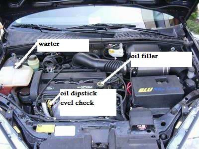 I Have A Ford Focus Lx Where Do I Put The Water And Oil In